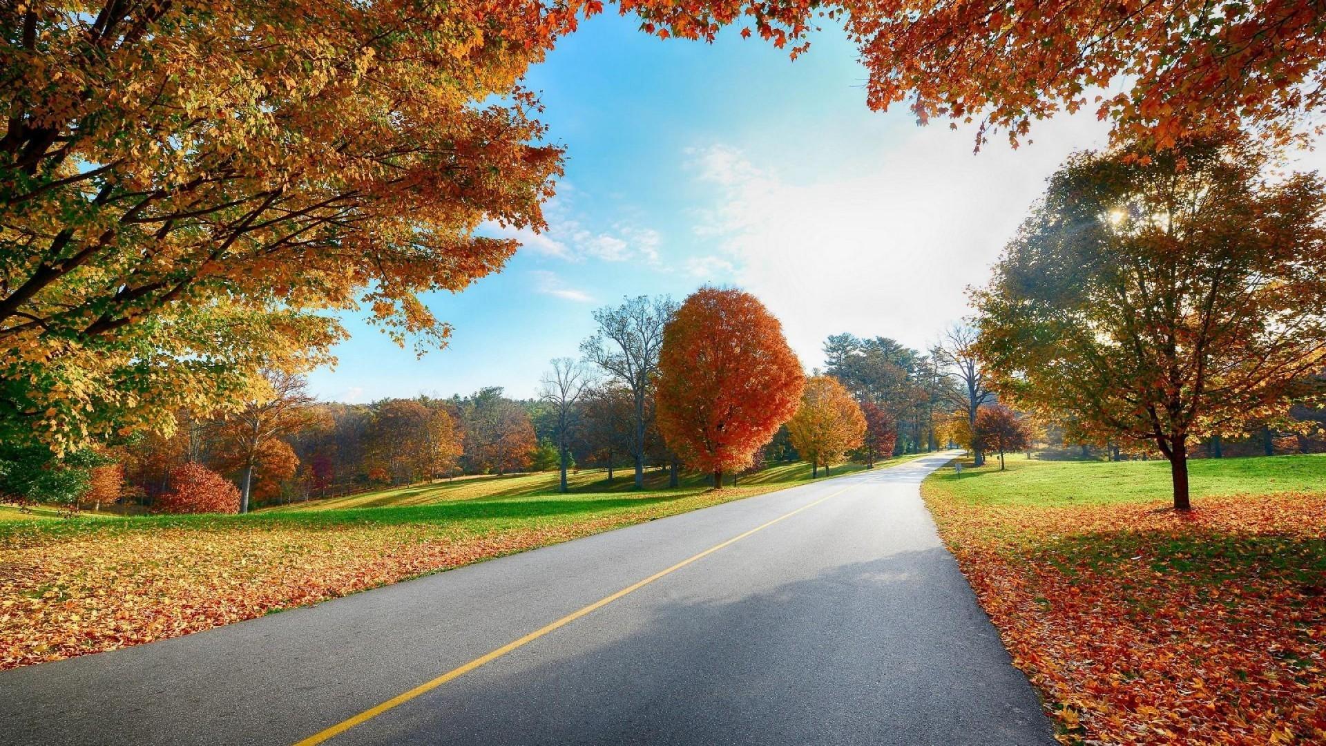 HD Wallpaper Nature 1080p Fall | HD Wallpapers Nature
